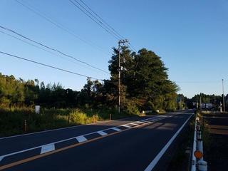 20210920-滝野どんこ1.jpg